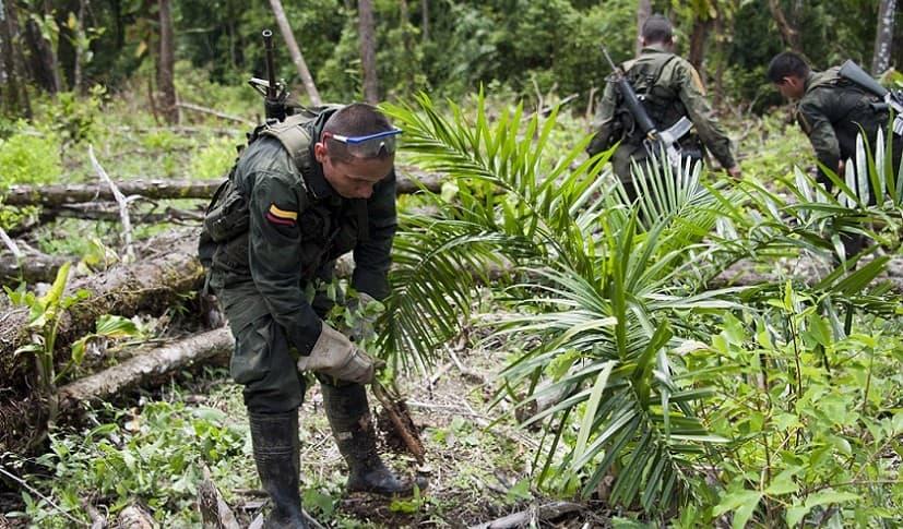 Policías en Tumaco