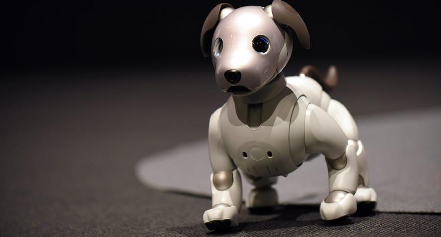 Perro-robot Aibo