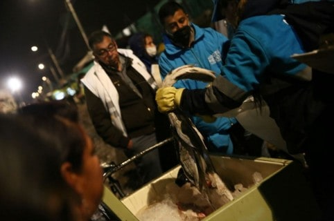 Pescado decomisado en ventas ambulantes de Kennedy