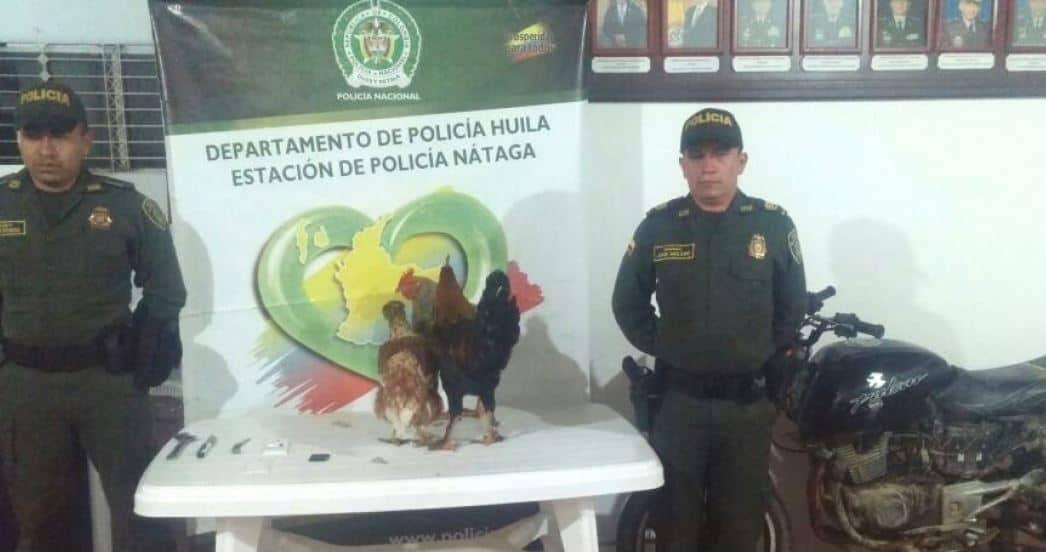Policía de Huila