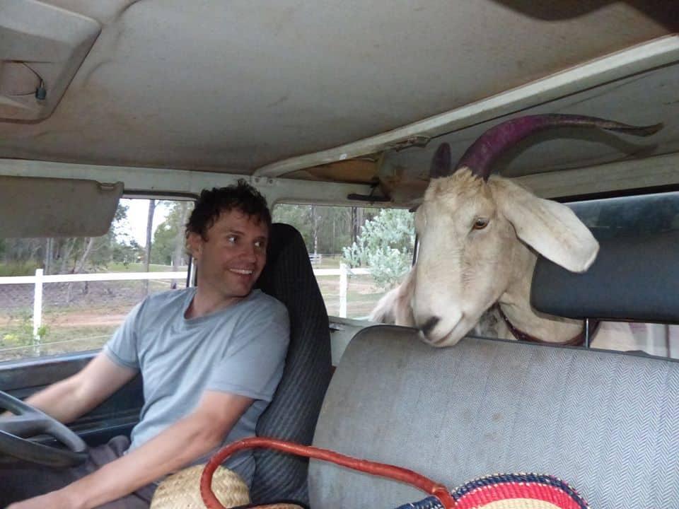La cabra Gary