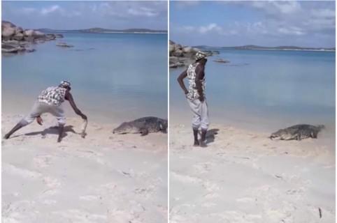 Hombre alimenta a cocodrilo.
