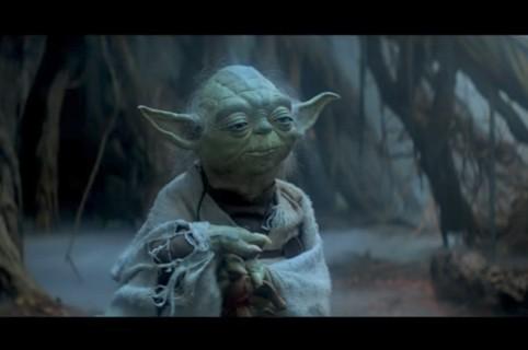 Yoda. Pulzo.