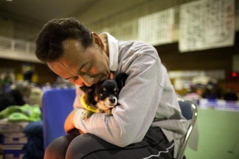 Hombre abraza a perro. Pulzo.