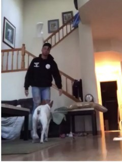 Joven y su perro. Pulzo.