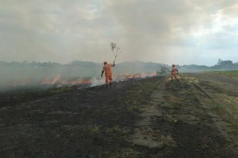 Defensa Civil trabaja en la extinción de las llamas