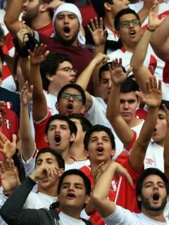 Hinchas de selección Perú
