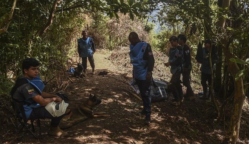 Erradicadores de cultivos ilícitos en Colombia