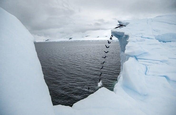 Orlando Duque The Antarctic Dive
