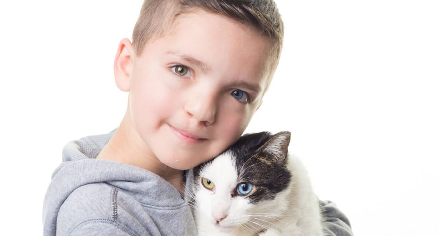 Niño con ojos de diferente color adopta a gato con su misma condición.