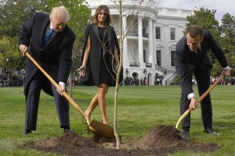 Donald Trump y Emmanuel Macron sembrando el árbol
