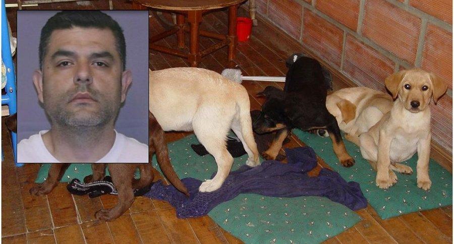 Andrés López Elorez y cachorros usados en tráfico