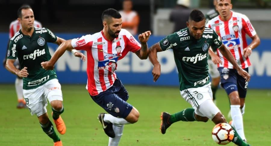 Palmeiras - Junior
