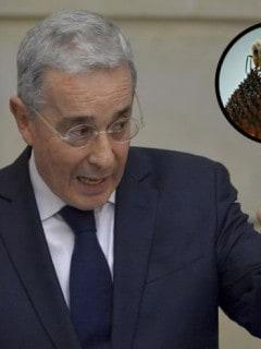 Uribe abeja