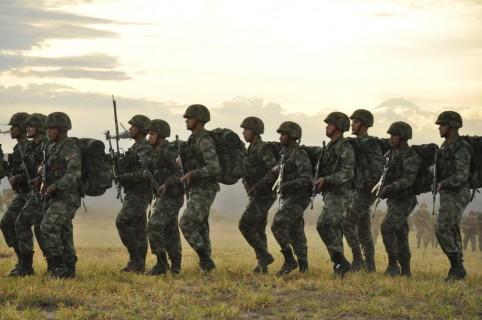 Soldados profesionales