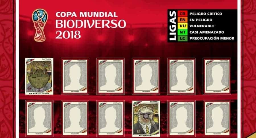11 ideal de biodiversidad