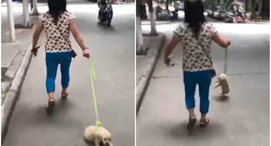 Mujer arrastra a su perro.