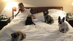 Presidente Santos y sus perros