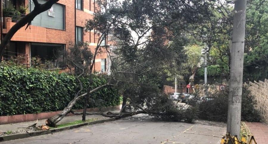 Árboles caídos por fuertes vientos en Bogotá
