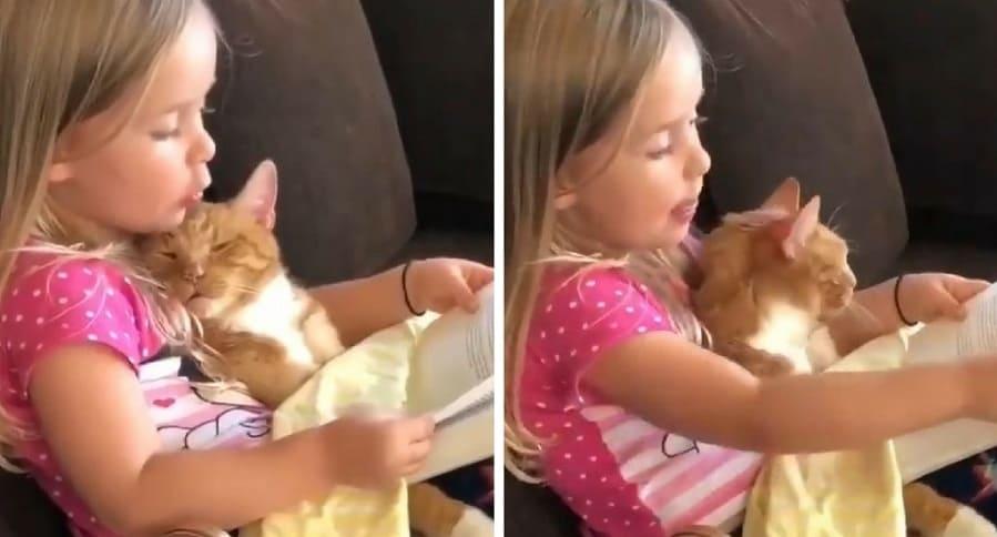 Niña y gato