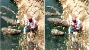 Hombre alimenta a cocodrilos.