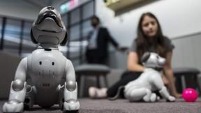 Perro robot en la Feria IFA 2018
