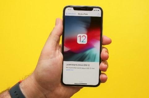 Celular con iOS 12