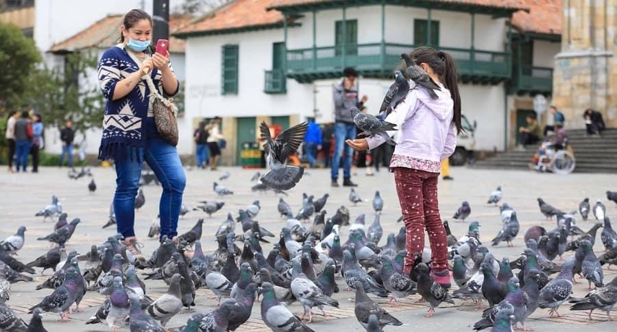 Palomas en la Plaza de Bolívar de Bogotá