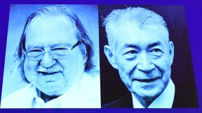 James P. Allison y Tasuku Honjo