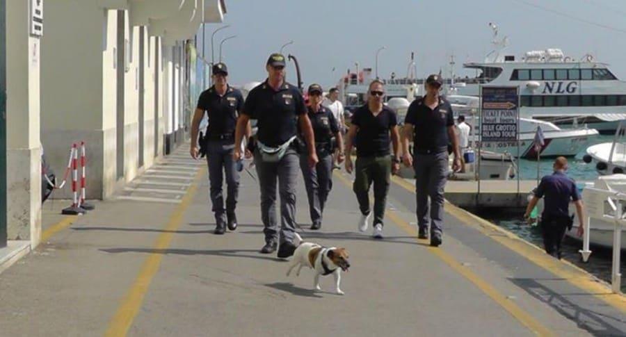Perro antinarcóticos en Italia.