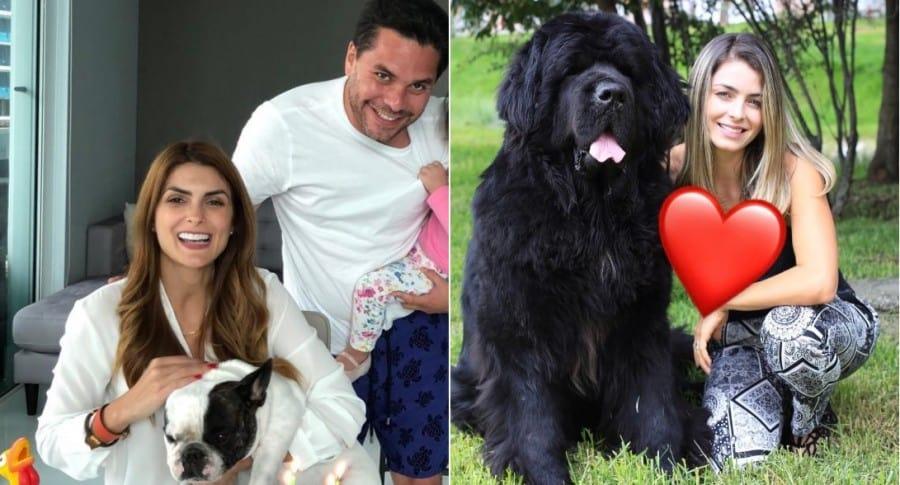 La presentadora Siad Char y el periodista Luis Carlos Vélez con su perro Ted; y la presentadora Cristina Hurtado con su mascota Odín.