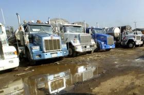 Camiones, mular