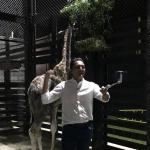 Juan Pablo Gallo y jirafa