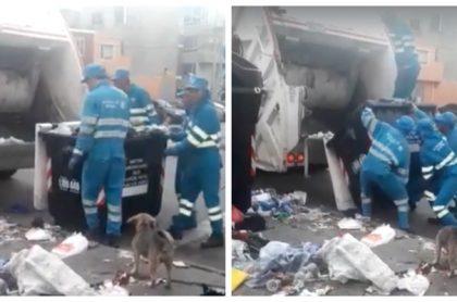 Trabajadores recolectores de basura