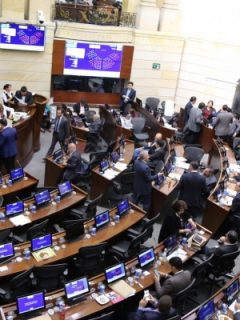 Plenaria del Senado, durante la discusión de la ley de financiamiento.