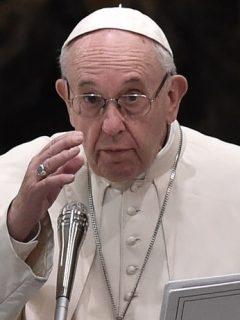 A pesar de las críticas, Francisco ratificaría como curas a hombres casados en Amazonía