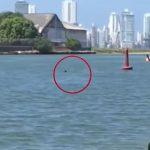 Momento en que hombre se ahoga en bahía de Cartagena