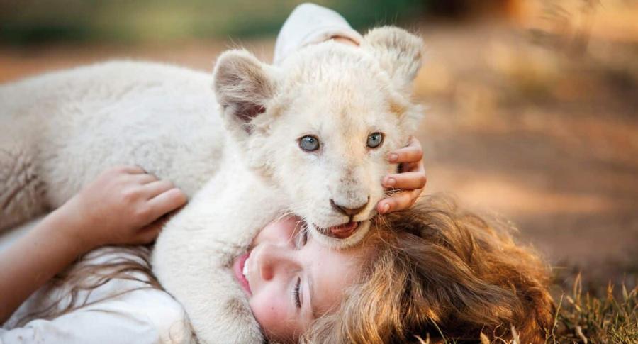 Mía y el león