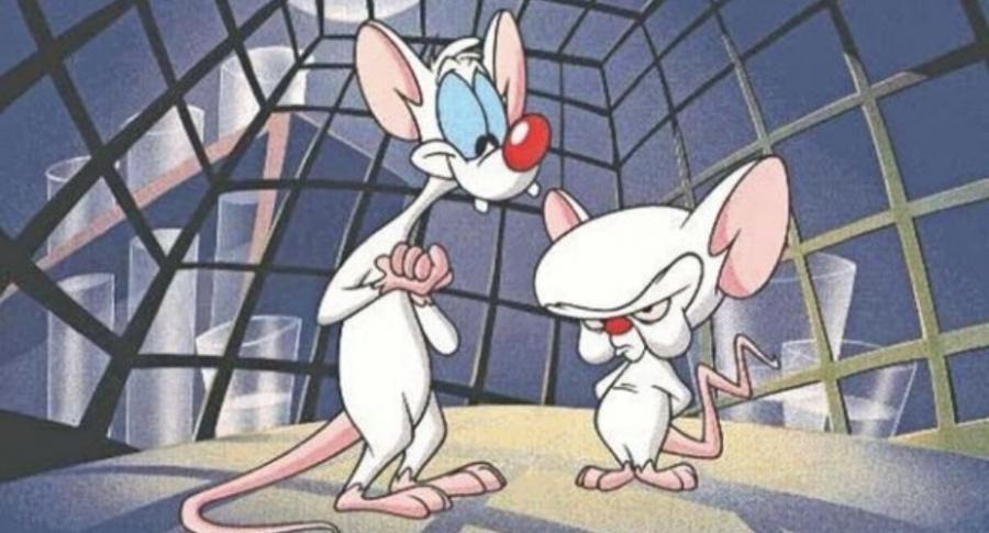 Pinky y Cerebro.