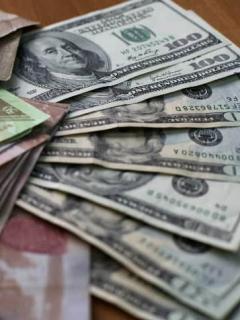 Bolivares y dólares