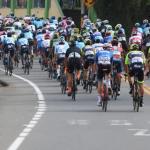 Lote de ciclismo