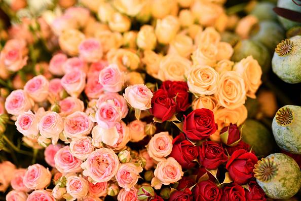 Rosas de regalo para el día de la mujer