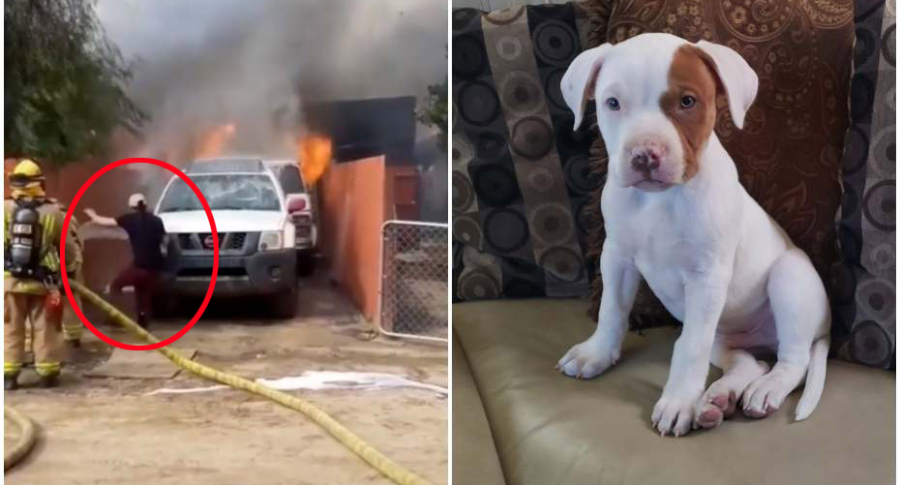 Hombre salva a perro de incendio.
