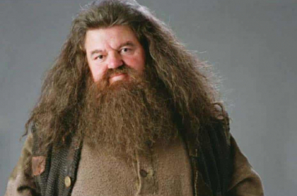 Hagrid, de 'Harry Potter'.