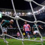 Palmeiras Junior