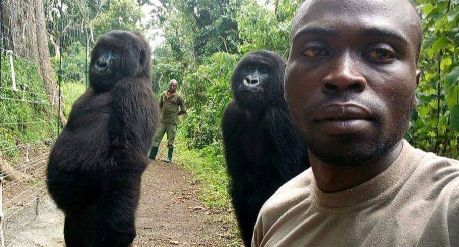Selfie de un cuidador de gorilas en Virunga