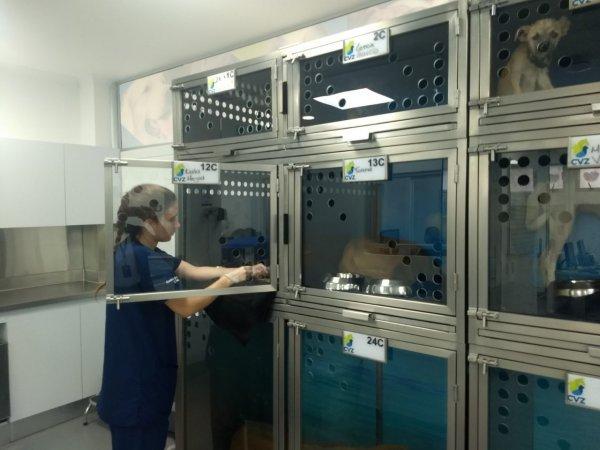 Sección del centro de atención para animales