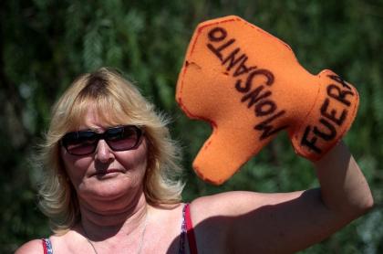 Activista contra Monsanto y el glifosatoActivista contra-Monsanto-y-el-glifosato
