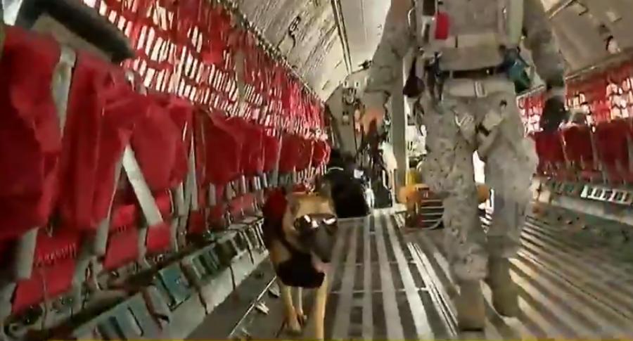 Zuqui, la perra paracaidista de la FAC