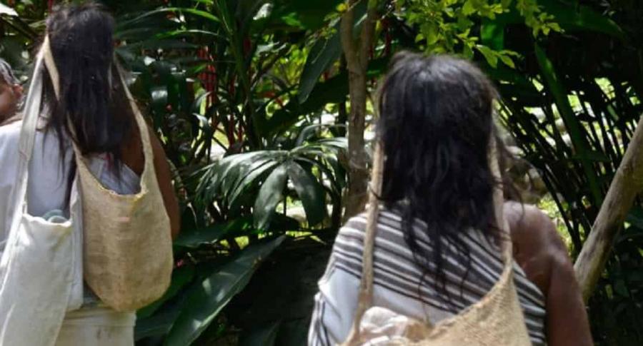 Asesinato de niña indígena en Pereira